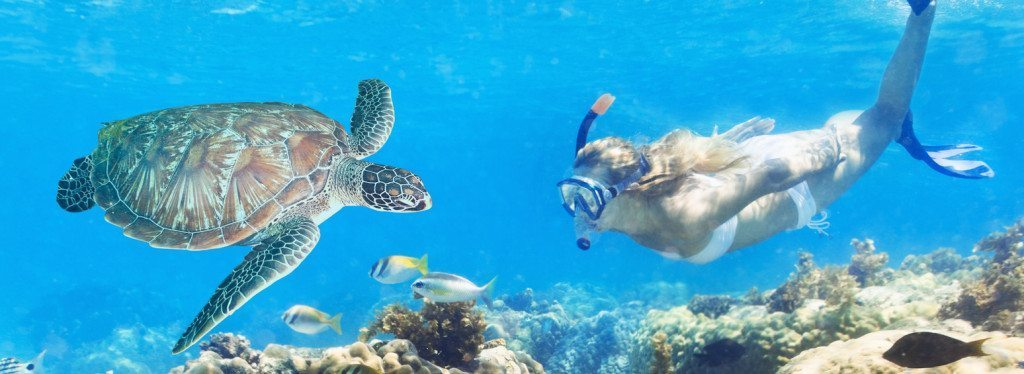 Woman with basic snorkel gear swimming over the coral reef with a turtle