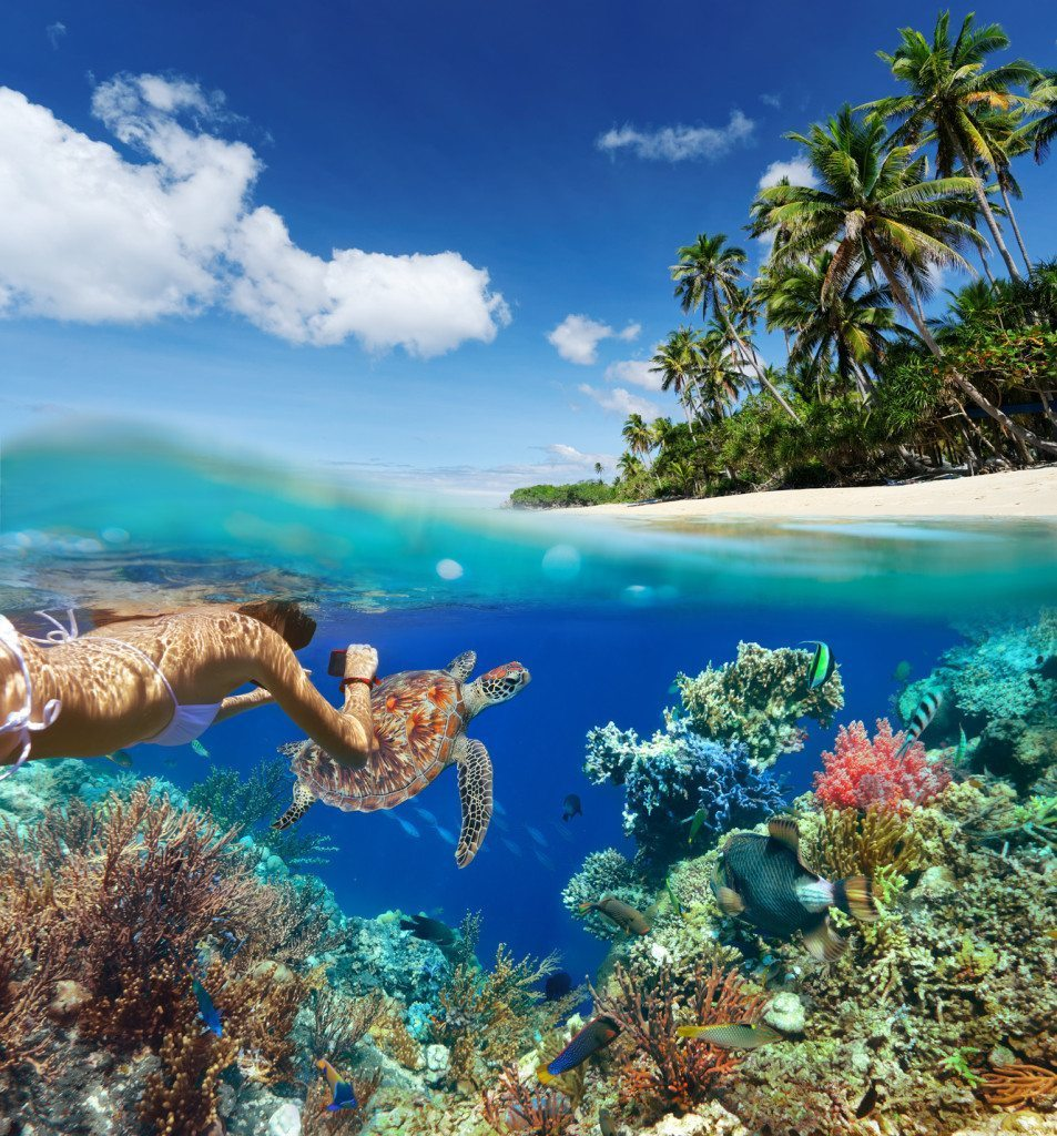 The Best Snorkeling Spots in the World