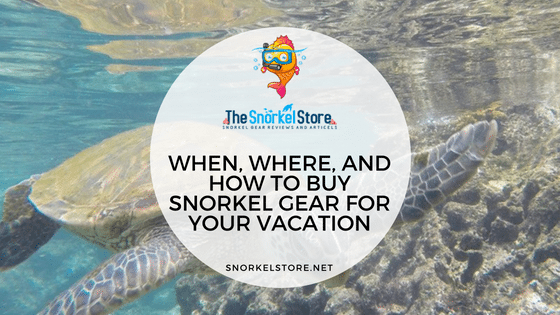 When And How To Buy Snorkel Gear For Vacation