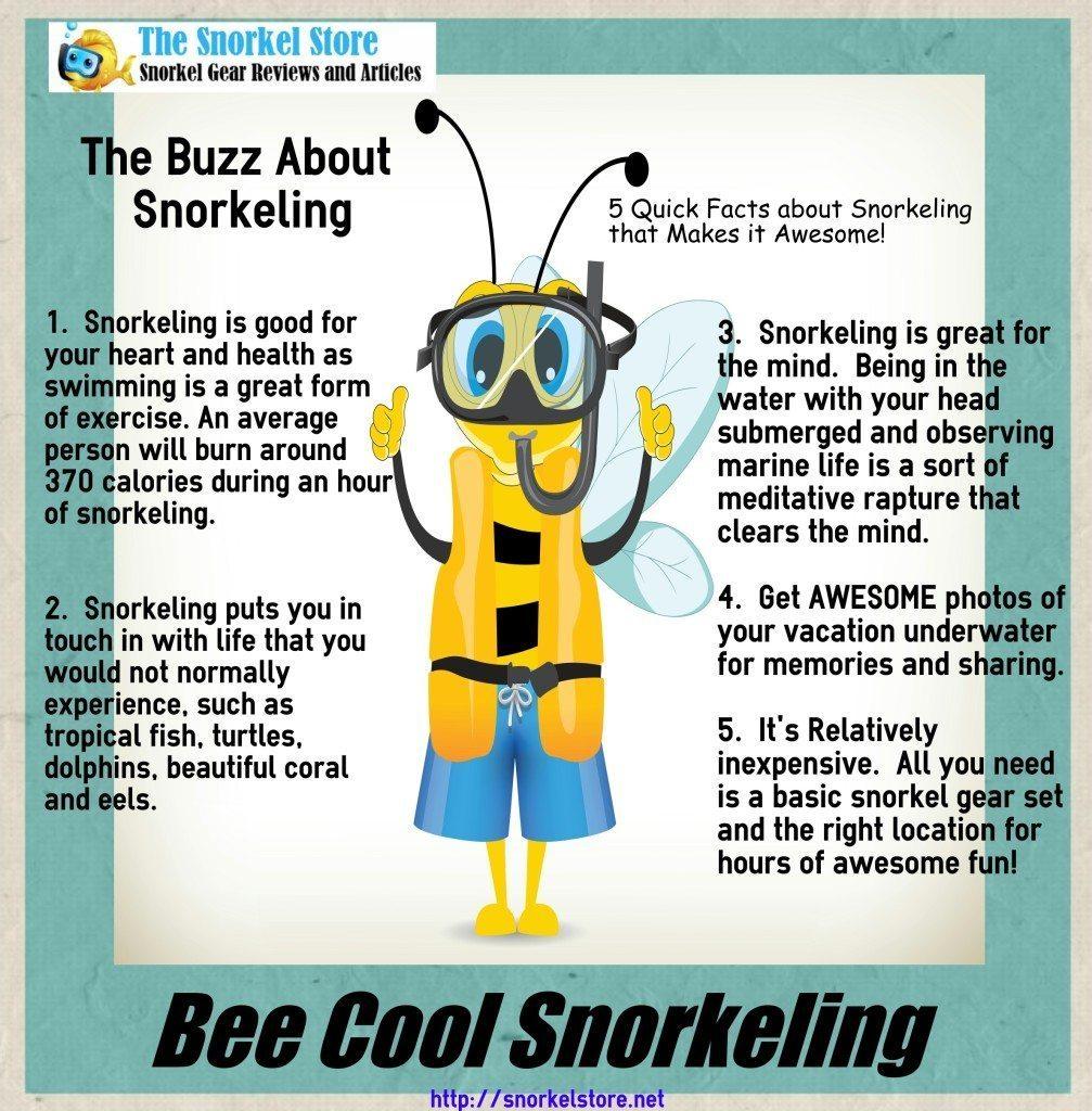BeeCoolSnorkeling