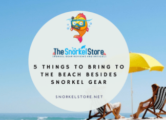 Blog title image for best beach gear