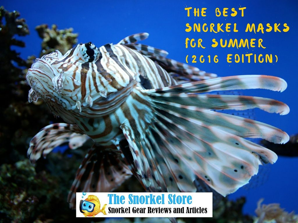 best-snorkel-masks-summer-2016