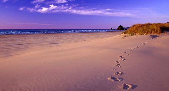 sand-foot-steps-beach-wallpapers-t