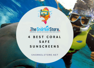 blog title image with man snorkeling