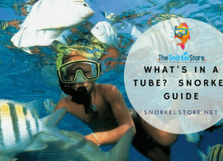 kid snorkeling with fish and wearing snorkel gear