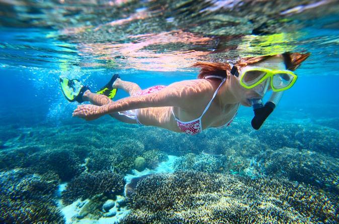 Leeward Oahu snorkel tour