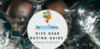 dive gear guide blog title with scuba diver looking out