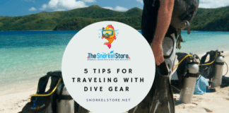 Man on Beach with dive gear blog title